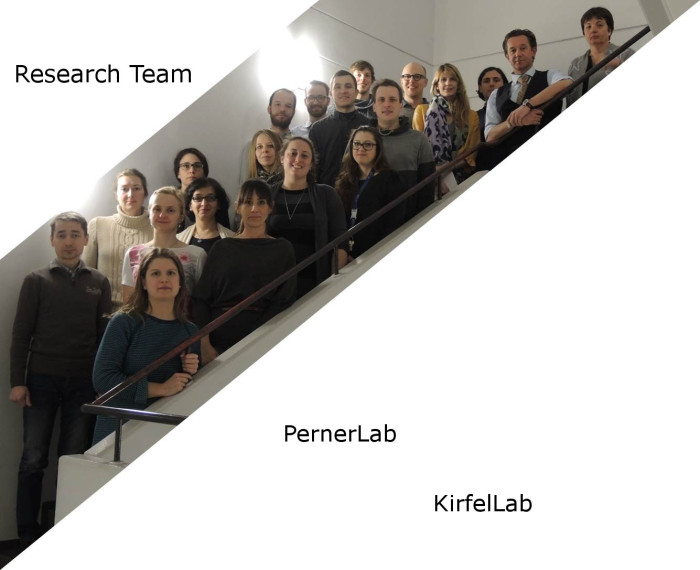 Research Team 2